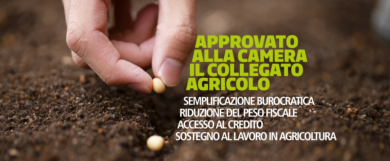 Collegato agricoltura gruppo pd camera dei deputati for Calendario camera deputati
